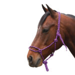 Navaho – Western Rope Halter Without Nose Knots