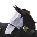 Eureka – Flymask & Nose Protector Set