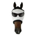 Showcraft – Funny Flymask – Mr Cool