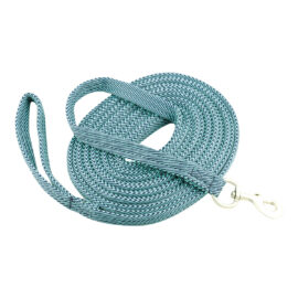 Eureka – Two Toned Lunge Lead Satin Snap