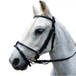 Eureka – Diamonte PVC Hanoverian Bridle