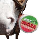 NRG – Pink Noze Zinc Cream Jar