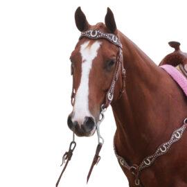 Navaho – Horseshoe Bling Western Bridle