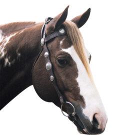 Navaho – Scalloped Silver Bridle