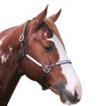 Navaho – Western Silver Headstall