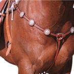 Navaho – Silver Stud Breastplate