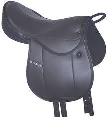 Status – Pony Pad Mounted